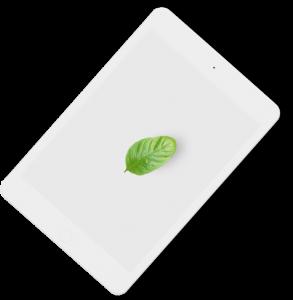 tablet-basilikum